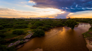 Rillito River Wordpress